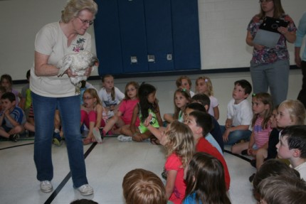 North Creek first-graders look at an adult chicken held by Linda Reilly.