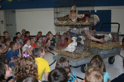 About 125 fist graders met full-grown hens and roosters.
